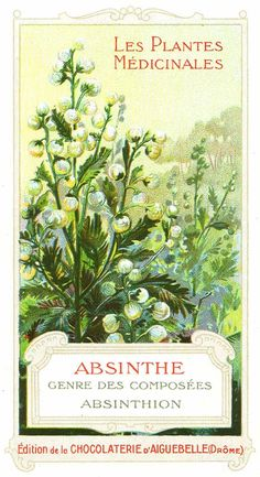 Absinthe's Garden:  Les Plantes Medicinales ~ #Absinthe.