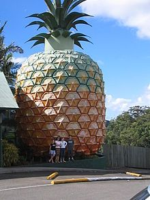 List of world's largest roadside attractions - Wikipedia, the free encyclopedia Big Pineapple, Pineapple Growing, Moving Overseas, Graffiti, Orange Beach, Roadside Attractions, Road Trippin, World's Biggest, Vacation Spots