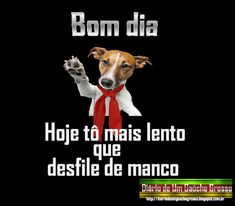 Gaucho, Rio Grande Do Sul, Humor, Terra, Good Morning Photos, Good Morning Wishes, Jokes With Pictures, Happy Birthday Sms, Sayings