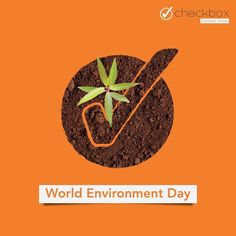 The greatest threat to our planet is the belief that someone will make an effort to save it.  On World Environment Day let's pledge to nurture the nature for our future - Checkbox  #worldenvironmentday #checkboxmarketing World Environment Day, Branding Agency, Make An Effort, App Development, Fun Activities, Good Times, Digital Marketing, Web Design, Let It Be