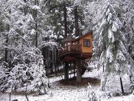 You can enjoy state of the art treehouse accommodations no matter what  time of year at Vertical Horizons in Cave Junction, Oregon which offers  winter packages for some of its distinctively designed properties such  as  The Calypso  (pictured).