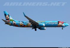 Boeing 737-990 aircraft picture