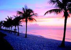 Classic palm tree beach scene