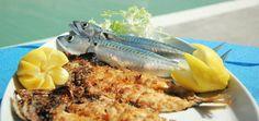 Gemischte Fischplatte im Ristorante Da Gher in Italien Italy, Vacation