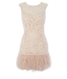 Lace Feather Dress  #lace #dress #feather