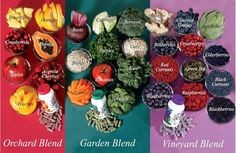 Juice Plus+ provides whole food based nutrition to promote a balanced diet to ensure you get enough servings of fruits, vegetables & grains. Learn more now! Whole Foods, Whole Food Recipes, Juice Plus Tower Garden, Juice Plus Capsules, Gum Health, Health Foods, Types Of Fruit, Vegetable Nutrition, Red Apple