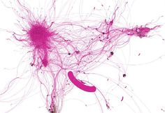 Network Analysis of Drugs and their Active Ingredients