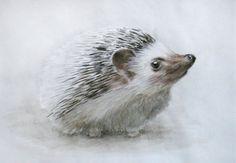 Hedgehog Watercolor Painting. Original Watercolor Painting. Realistic painting. Nursery Art. Wall Art. Baby hedgehog.