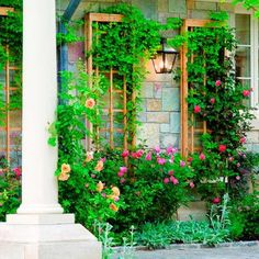 25 Vertical Landscaping Ideas Adding Spectacular Centerpieces to Backyard Designs