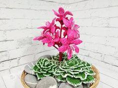 Crochet Cactus, Cactus Plants, Artwork, Bottle, Youtube, Crochet Socks, Flowers, Amigurumi, Crochet Frog