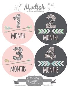 FREE GIFT, Monthly Onesie Sticker, Girl Monthly Onesie Stickers, Tribal Monthly Stickers, Baby Month Stickers, Arrows, Chevron, Pink, Gray by ModishCC on Etsy https://www.etsy.com/listing/222700128/free-gift-monthly-onesie-sticker-girl
