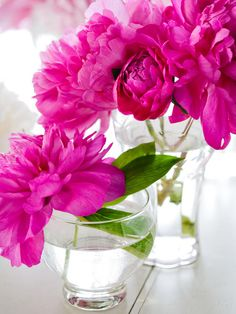 Pink peonies..so pretty