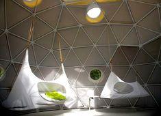 The Dome Garden