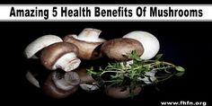 Amazing 5 Health Benefits Of Mushrooms   Family Health Freedom Network