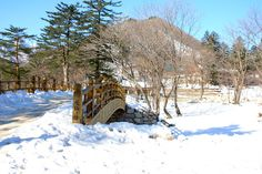 Mt.Sorak - Korea