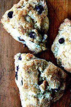 tartine's buttermilk scones with blueberries | alexandra cooks