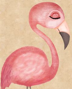 Flamingo Art - The Fanciest Flamingo Art Print from my Fancy Feathered Friends series.