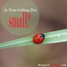 Is Your Calling Too Small? - MargaretFeinberg.com