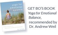 Bo Forbes Online Course   In this course, you'll learn Bo's revolutionary style of yoga therapeutics. You'll get her special take on the intersection of psychology, neuroscience, yoga, and mindfulness.
