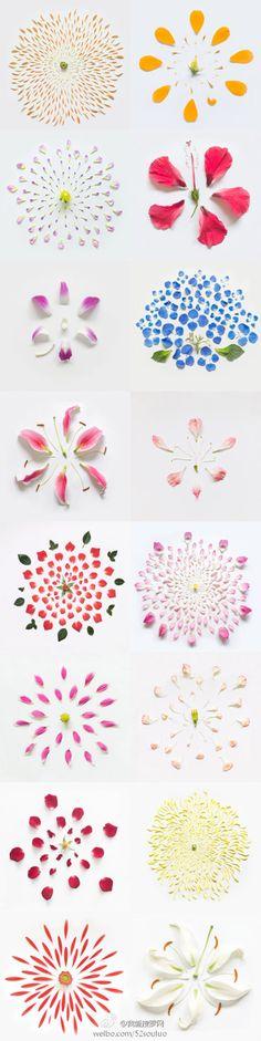 flower idea - zzkko.com
