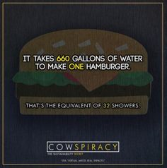 It takes 660 Gallons of Water to make ONE hamburger.  That's the equivalent of 32 showers!! Save Water ~ Go Vegan! #MyVeganJournal