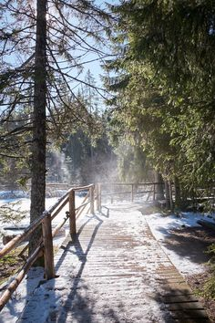 Wildes Wintermärchen im Jura Text: Stephanie Hess; Fotos: Fabian Unternährer