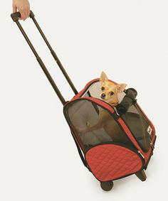 This Red Roll Around Pet Carrier is perfect! #zulilyfinds