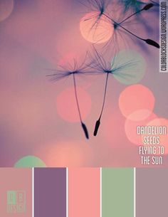 Dandelion Seeds Flying to the Sun | Color Blocks Design