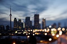 Tilt Shift skyline by Jeff-C-C, via Flickr