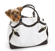 $62 The Scarlett Pet Carrier in Dove White by Designer Pet Products, http://www.amazon.com/dp/B008GWIM54/ref=cm_sw_r_pi_dp_.4AMrb1Q0ZT7A
