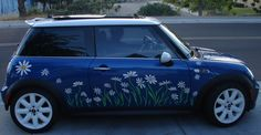 daisy flower decal stickers to fit Mini Cooper Mini Cooper 2017, Mini Driver, Mini One, Mini Things, Cute Cars, Teal Blue, Vintage Cars, Dream Cars, Cool Photos