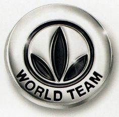 World Team Pin Herbalife Step Up To Leadership And Have A Place To