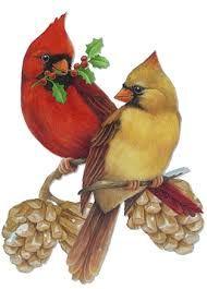 Shop Cardinal Pair Statuette created by Spice. Christmas Bird, Vintage Christmas Cards, Christmas Clipart, Cardinal Tattoos, Photo Sculpture, Art Carte, Cardinal Birds, Bird Pictures, Bird Art