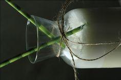 Melktert Dom Pedro Melktert, South African Recipes, Kos, Plant Leaves, Recipies, The Past, Favorite Recipes, Drinks, Kitchen