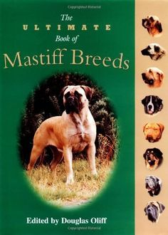 The Ultimate Book of Mastiff Breeds (Essential) by Douglas Oliff.