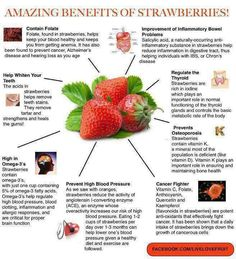 Incredible Food Facts and Health Benefits #16