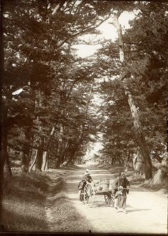 """Japan, 1907 """"On the Tokaido - the old post road of Japan"""" Photograph by Herbert Ponting"""