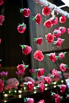 hanging roses for the backdrop