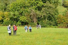 Buiten zijn in de natuur is gezond. Met Beter in het Groen vind je eenvoudig gezond aanbod in de natuur. Activiteiten die je helpen gezond te blijven of gezonder te worden.Van wekelijkse wandelgroepen en buiten-sportlessen tot kindertherapie en re-integratie in het groen. Allemaal in een natuurlijke omgeving. In een natuurgebied of juist dicht bij huis. De
