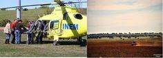Campomaiornews: Criança atacada por cães transferida por helicópte...