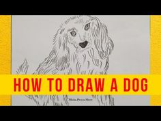 International Dog Day 2021 Drawing | How to Draw a Dog | dog Drawing simple & Easy Step by Step - YouTube Dog Drawing Simple, International Dog Day, Drawing Competition, August 26, Dog Show, Dog Days, Dog Lovers, Drawings, Dogs