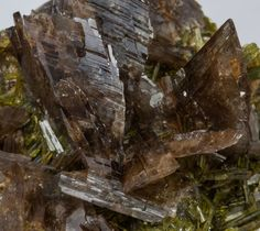 Axinite-(Mn), Ca2Mn++Al2BO3Si4O12(OH) , with Epidote,  Canta, Canta District, Canta Province, Lima Department, Peru. Aggregates of very sharp brown-colored Axinite crystals, some of them doubly terminated, between transparent and translucent, very bright and on matrix, with Epidote crystals