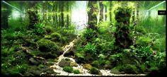 idée aquarium