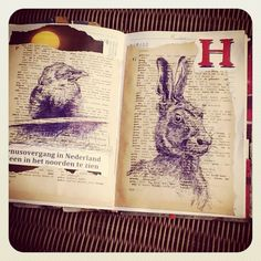 6 and 7 June - Venus the little Jackdaw and a hare - collage and bic on old pages of an english dictionary and red marker for the letter H