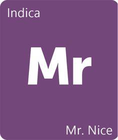 Mr. Nice Strain Information