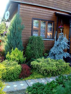 60 Beautiful Front Yards And Backyard Evergreen Garden Design Ideas - artmyideas Villa Architecture, Evergreen Landscape, Evergreen Garden, Evergreen Shrubs, Landscaping Trees, Front Yard Landscaping, Luxury Landscaping, Landscaping Company, Windows