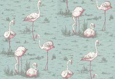 Product: 666044-Flamingos