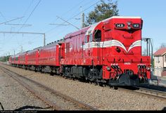 RailPictures.Net Photo: 1431 Steam Incorporated EMD G12A (Da) at Ohakune, New Zealand by John Russell