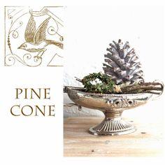 Pinienzapfen und Waldduft * Pine Cones and the smell of the winter forest Drawing Sketches, Drawings, Pine Cones, Place Cards, Place Card Holders, Winter, Pine Cone, Weihnachten, Lawn And Garden