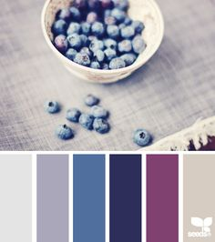 see this and the related palette with the mustard in it - the medium blue is close to the shade on the walls that Nick doesn't want to change, mixes well with the navy/orchid/mustard...   blueberry tones